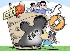 股票漫画 基金的老鼠仓